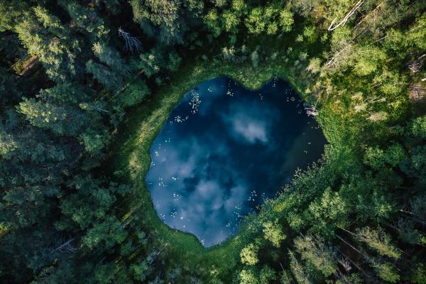 Flygfoto av en damm mitt i skogen. Dammen reflekterar himlen och molnen