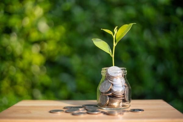 Kuvituskuvassa kolikoita lasipurkissa, rahojen keskeltä kasvaa verso