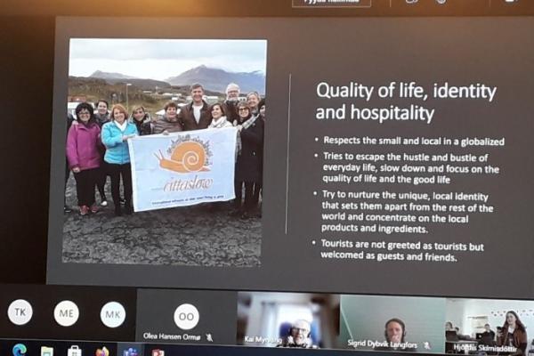 Virtuaalisesti Islannissa