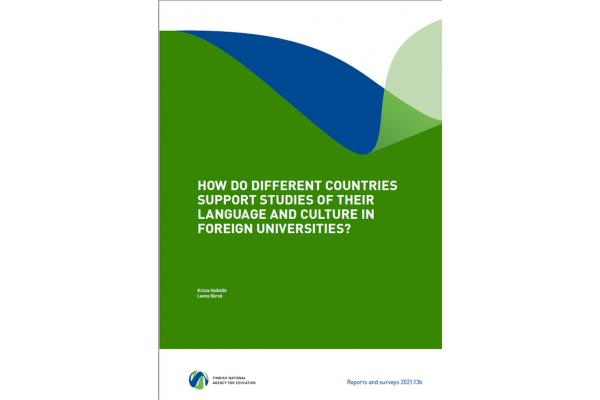 How do different countries support studies of their language and culture in foreign universities?