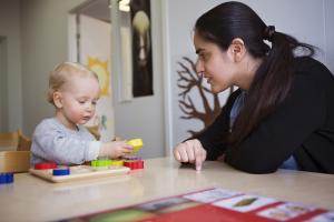Recognition of professional qualifications in ECEC: adaptation period or aptitude test and the final decision
