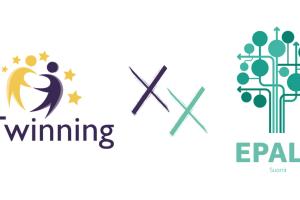 Samarbeta internationellt på hemmaplan: digitala möjligheter med hjälp av eTwinning och EPALE