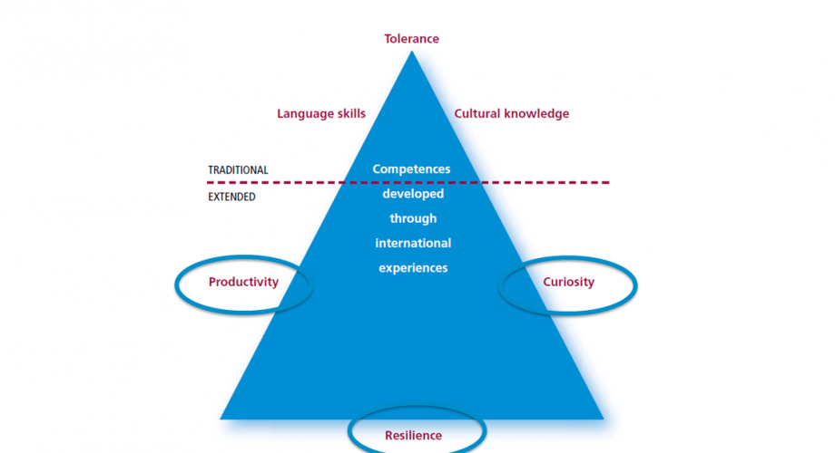 Language skills, tolerance and cultural know-how have traditionally been seen as competences acquired through international experiences. In a wider sense, hidden international competences can also include productivity, curiosity and tenacity.